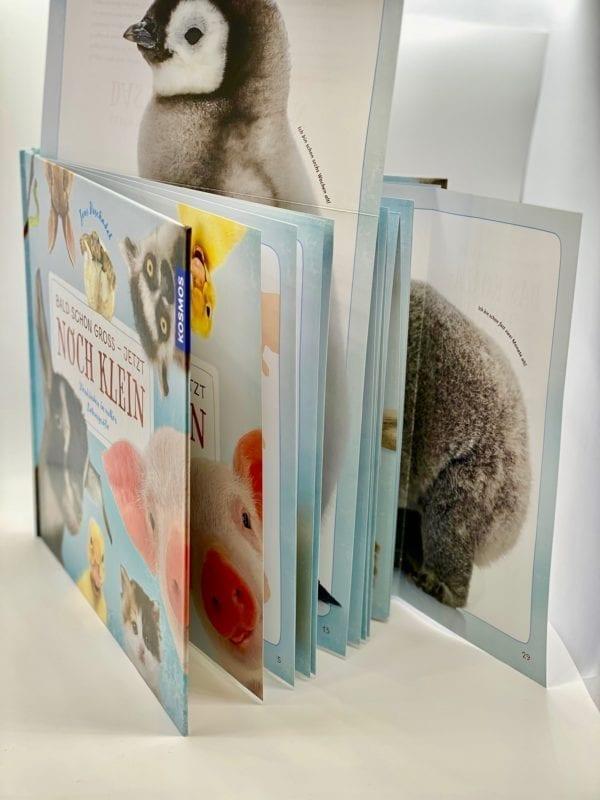 Ausklapptafeln: Hardcover, Seiten nach oben und seitlich ausklappbar